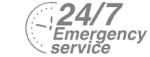 24/7 Emergency Service Pest Control in Stockley Park, UB11. Call Now! 020 8166 9746